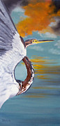 Donna Francis - Tri Colored Heron