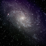 New Mexico Photos - Triangulum Galaxy by A. V. Ley