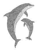 Black And White. Drawings - Tribal Bottle Nose Dolphin and Calf by Carol Lynne