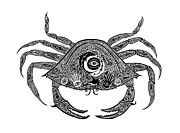 Scuba Drawings - Tribal Crab by Carol Lynne
