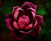 Red Rose Digital Art - Tribal Rose by Bill Tiepelman