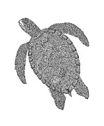 Beaches Drawings Posters - Tribal Turtle II Poster by Carol Lynne