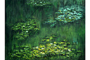 Shankhadeep Bhattacharya - Tribute to Monet 5