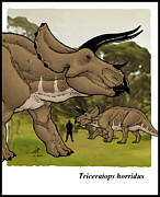 Dinosaur Illustration Mixed Media Prints - Triceratops Print by Josep Zacarias