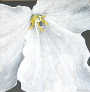Tom Faires Paintings - Trillium by Thomas Faires
