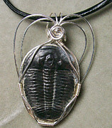 Grey Black Jewelry - Trilobite Twirl Pendant by Heather Jordan