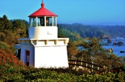 Trinidad Photos - Trinidad Lighthouse by Helen Carson