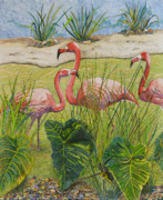 Flamingo Drawings - Trio of Threes by Karen Merry