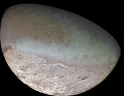 Neptune Prints - Triton, The Largest Moon Of Planet Print by Stocktrek Images