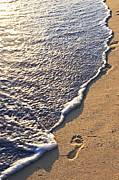 Foam Posters - Tropical beach with footprints Poster by Elena Elisseeva