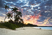 {locations} Posters - Tropical Caribbean White Sand Beach Paradise at Sunset Poster by Dave Allen