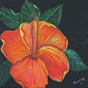 Dawn Harrell - Tropical Flora
