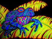 Rainbow Drawings Prints - Tropical Frog Print by Nick Gustafson