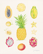 Passion Fruit Painting Prints - Tropical Fruit 1 Print by Joel Carlson