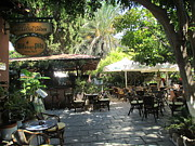 Rhodes Originals - Tropical Greek Restaurant by Elaine Haakenson