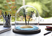Desk Photo Prints - Tropical Island Under Glass Dome Print by Jeffrey Coolidge