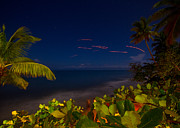 Rincon Beach Framed Prints - Tropical Night Framed Print by Tim  Fitzwater