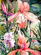 Watercolor Drawings Posters - Tropical Orchids Poster by Mindy Newman