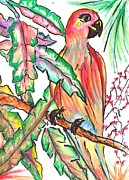 Yellow Beak Paintings - Tropical Parrot by Debbie Wassmann