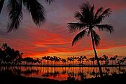 Tropical Sunset Metal Prints - Tropical Sunset Reflections Metal Print by Jennifer Crites