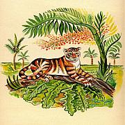 John Keaton Paintings - Tropical Tiger by John Keaton