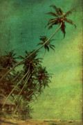 Beach Digital Art Posters - Tropical Vestige Poster by Andrew Paranavitana