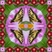 Blooms  Butterflies Photo Framed Prints - Tropicana Framed Print by Bell And Todd