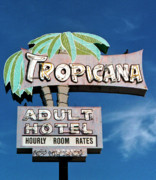Mid-20th Digital Art Framed Prints - Tropicana Framed Print by Matthew Bamberg
