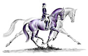 Swan Drawings Prints - Trot On - Dressage Horse Print color tinted Print by Kelli Swan