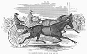Trotting Art - Trotting Horses, 1854 by Granger