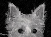 Dogs Digital Art Originals - Trouble by Alice Lero