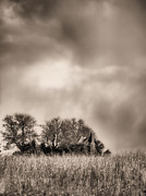 Weathered Houses Prints - Trouble Brewing II BW Print by JC Findley