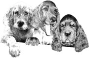 Dogs Drawings - Trouble by Carole Raschella