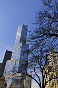 Water St Chicago Photos - Trough the branches by Dejan Jovanovic