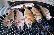 Cooking Fish Posters - Trout being grilled on a hot barbeque Poster by Sami Sarkis