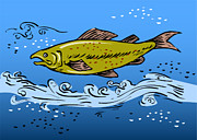 Fish Artwork Posters - Trout Fish Swimming Underwater Poster by Aloysius Patrimonio