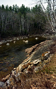 Mountain Stream Art - Trout Fishery by Skip Willits