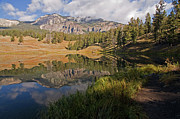 Reflection Art - Trout Lake, Yellowstone National Park by DBushue Photography