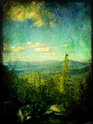 Boyfriend Acrylic Prints - Truckee Trails by Leah Moore