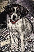 Puppy Prints - Trudy May the Puppy Print by Robert Goudreau