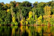 Appleton Prints - True colors of Fall Print by Joshua Fronczak