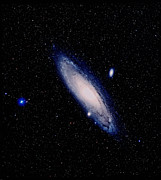 Elliptical Galaxy Posters - True-colour Palomar Image Of The Andromeda Galaxy Poster by Celestial Image Picture Co.