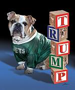 Pet Portraits Digital Art Posters - Trump Poster by Harold Shull