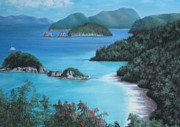 National Parks Paintings - Trunk Bay by Luci Lesmerises