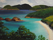 Snorkeling Painting Originals - Trunk Bay National Park by Robert Rohrich