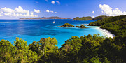 Sandy Beaches Framed Prints - Trunk Bay Panorama Framed Print by George Oze