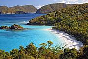 Bathing Photo Prints - Trunk Bay St John US Virgin Islands Print by George Oze
