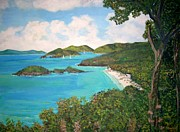 Teresa Dominici - Trunk Bay