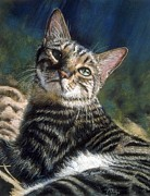 Cat Portraits Pastels Prints - Trust Print by Kay Ridge