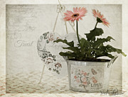 Flowers Gerbera Prints - Trust  Print by Sandra Rossouw